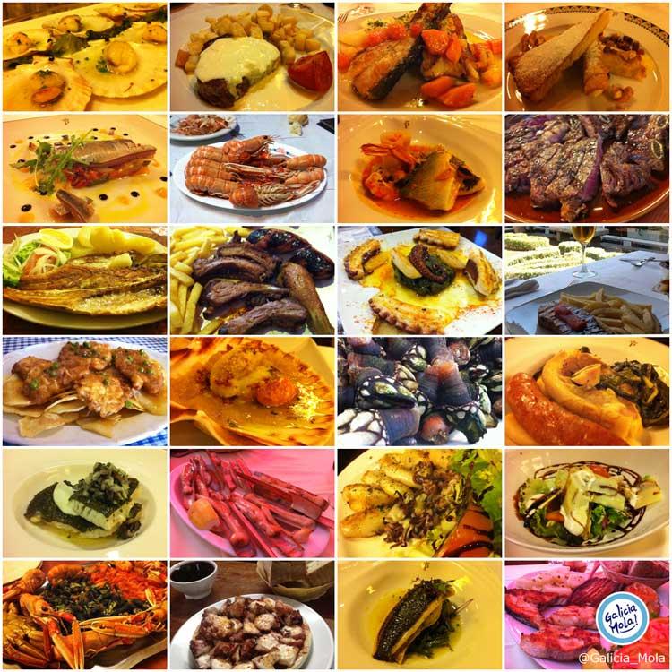 Gastronomía de Galicia, Ruta Galicia Mola